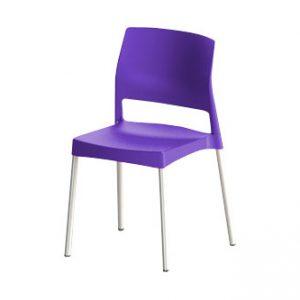 s144_violeta